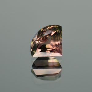 BiColorTourmaline_fan_12.1x9.9mm_4.51cts_N_b_tm1066
