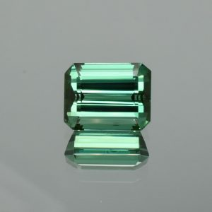 BlueGreenTourmaline_eme_cut_13.0x10.2mm_9.01cts_tm1296
