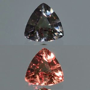 CCGarnet_trillion_6.0mm_0.74cts_combo_cc338