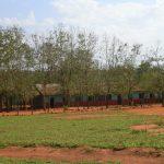 2006-10_Umba Valley (11)