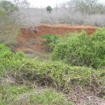 2006-10_Umba Valley (28)