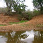 2006-10_Umba Valley (31)