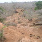 2006-10_Umba Valley (42)