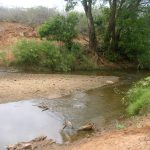 2006-10_Umba Valley (44)