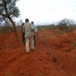 2006-10_Umba Valley (79)