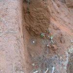 2006-10_Umba Valley (92)