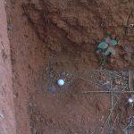 2006-10_Umba Valley (93)