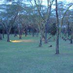2009-04_Naivasha-Hells-Gate-10.jpg