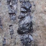 2009-04_Naivasha-Hells-Gate-19.jpg