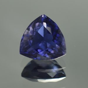 Iolite_trillion_10.8mm_4.00cts_io109