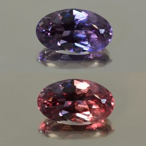 ColorChangeGarnet_oval_10.4x6.2mm_2.66cts_N_cc198_combo