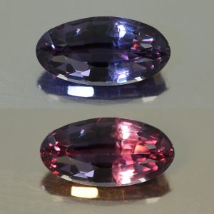 ColorChangeGarnet_oval_11.5x5.8mm_2.56cts_N_cc199_combo