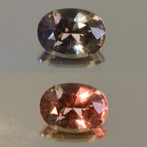 ColorChangeGarnet_oval_8.1x6.0mm_1.56cts_N_cc306_combo