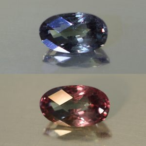 ColorChangeGarnet_oval_8.2x5.0mm_1.47cts_N_cc335_combo